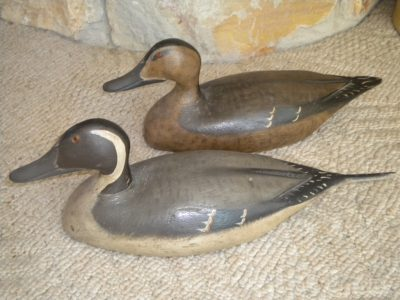 Frank Resop Pintails