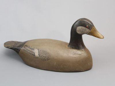 Nelow Goose