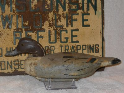 Walter Ruppel Pintail