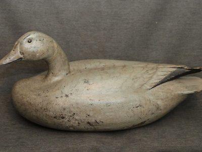 Reindahl Snow Goose2