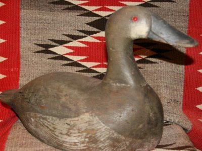 Gus Nelow Canvasback Hen