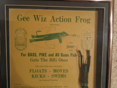 Gee Wiz Frog Display